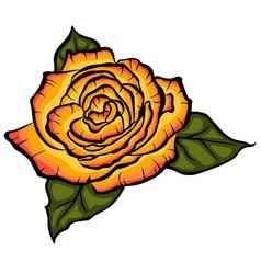 orange rose with green leaves black lined rose vector image vector image