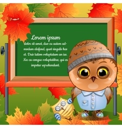 Owlet going to first class with his toy vector image