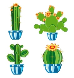 Cactuses in pot vector