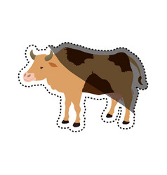 cow farm animal vector image vector image