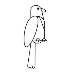 Parrot exotic bird nature thin line vector