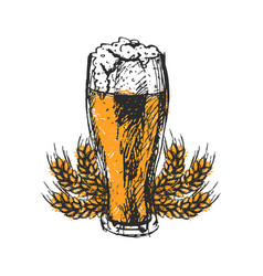 craft beer and pub sketch vector image