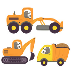 Mole and working transport vector