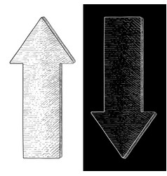 Up and down arrow hand drawn sketch vector