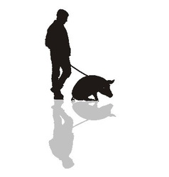 Man with a pig on a leash vector image
