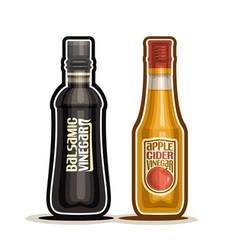 Balsamic and apple cider vinegar bottles vector