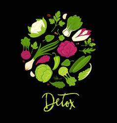 Detox poster of lettuce salads and green vector