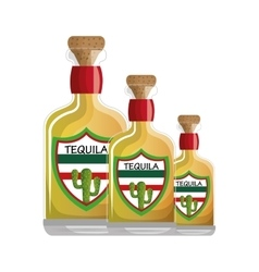 Mexican tequila drink icon vector