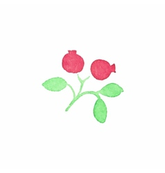 Watercolor cranberry on the white background vector