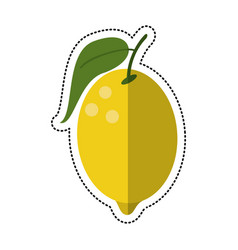 Cartoon lemon citrus fruit icon vector