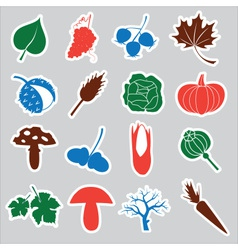 autumn stickers eps10 vector image