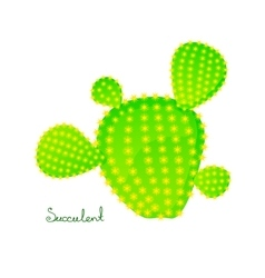 Green prickly pear cactus vector