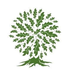 oak tree silhouette isolated on white background vector image vector image