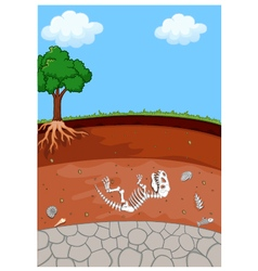 Soil layers with dinosaur fossil vector