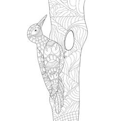 Woodpecker coloring for adults vector