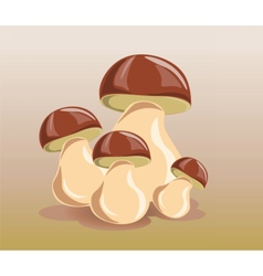 Mushrooms design isolated vector