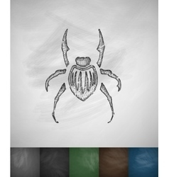 Beetle icon hand drawn vector
