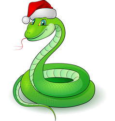 Cartoon of a snakes on white vector