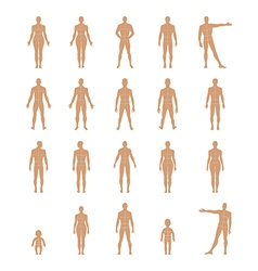 Full length front back human silhouette vector