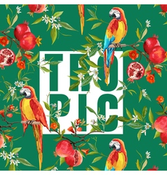 Vintage Pomegranates Flowers and Parrot Birds vector image