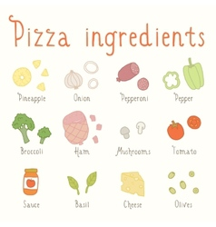 Hand drawn ingredients vector