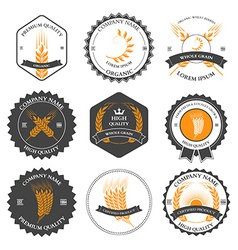 Ears of wheat and rye set labels badges vector