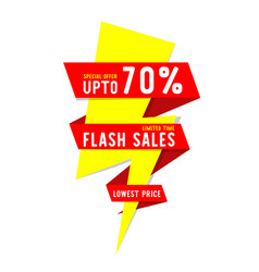 Flash sales limited time special offer up to 70 vector