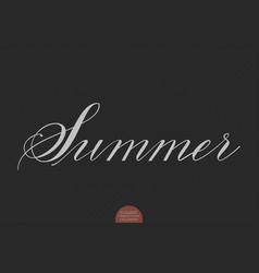 hand drawn lettering summer elegant vector image