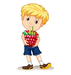 Little boy holding rasberry vector