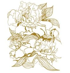 drawing peonies bouquet vector image vector image