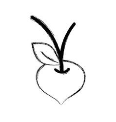 Figure beet organic healthy vegetable vector