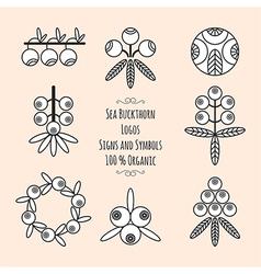 Set of the sea-buckthorn logos vector image