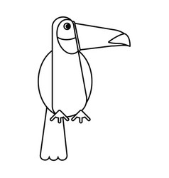 toucan bird exotic fauna thin line vector image