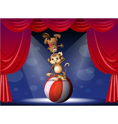 A beaver and a monkey perfoming on the stage vector image