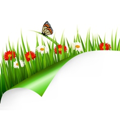 Spring background with flowers grass and a vector