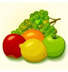 solar fruit vector image
