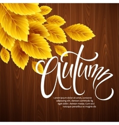 Autumn background with leaf and wood texture vector
