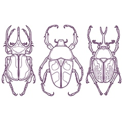 Set of 3 beetle bugs insect outline hand drawn vector