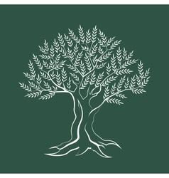 Olive tree outline silhouette icon vector