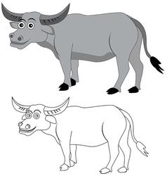African cape buffalo vector