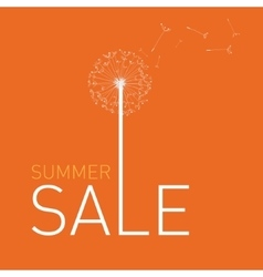 Summer sale collection vector