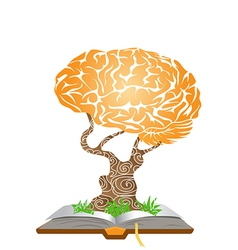 brain tree on book vector image vector image