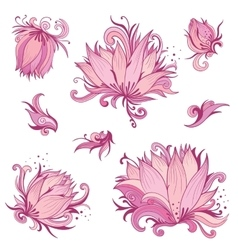 Pink Lotus Flowers Set vector image