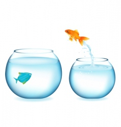 goldfish jumping to other fish vector image