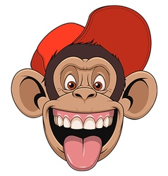 Monkey head in a cap vector image vector image