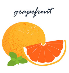 Fresh organic grapefruit sweet and sour tasty vector