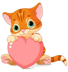 Valentines day kitten vector
