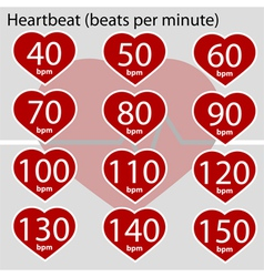 Heartbeat infographic vector