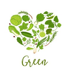 Vegetables and green lettuce salads diet heart vector