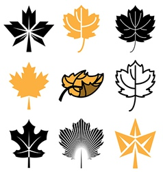 Logo icons mapleleaf vector